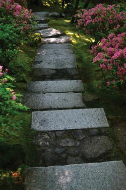 Garden Stairs I by Brian Moore