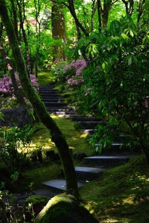Garden Stairs II by Brian Moore