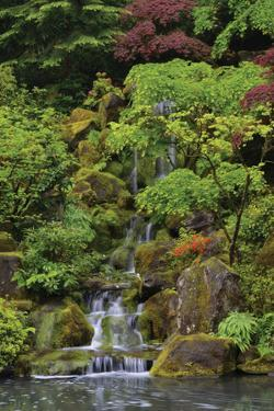 Japanese Gardens I by Brian Moore
