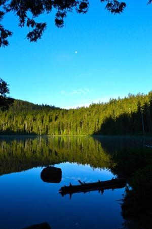Morning at the Lake I by Brian Moore