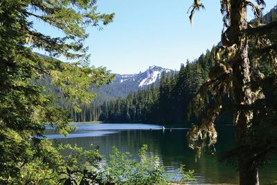 Morning at the Lake III