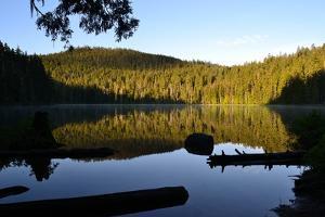 Morning at the Lake IV by Brian Moore