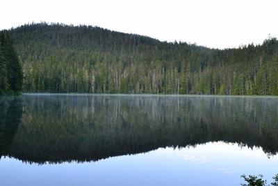 Morning at the Lake V by Brian Moore