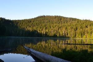 Morning at the Lake VI by Brian Moore