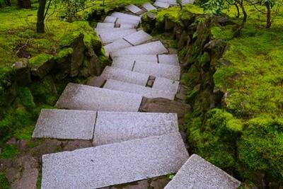 Steps I by Brian Moore