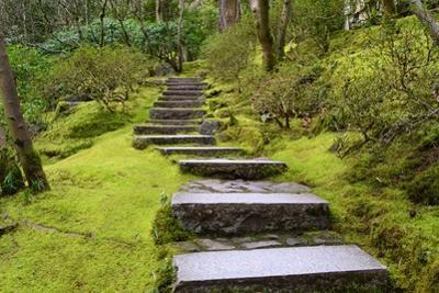 Steps II by Brian Moore