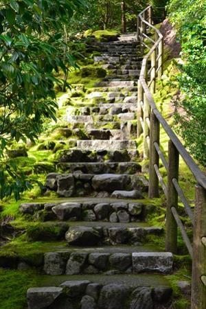 Steps III by Brian Moore
