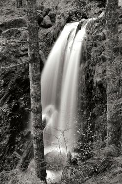 Waterfall I by Brian Moore