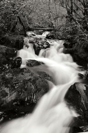 Waterfall II by Brian Moore