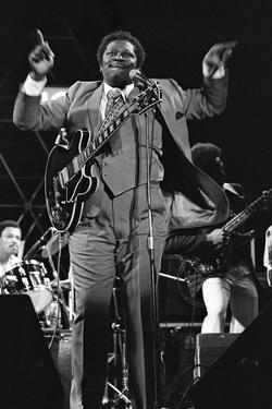 B.B. King, Capital Jazz, Knebworth, 1982 by Brian O'Connor