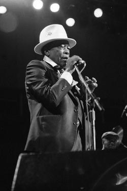 John Lee Hooker, Royal Festival Hall, London, 1988 by Brian O'Connor