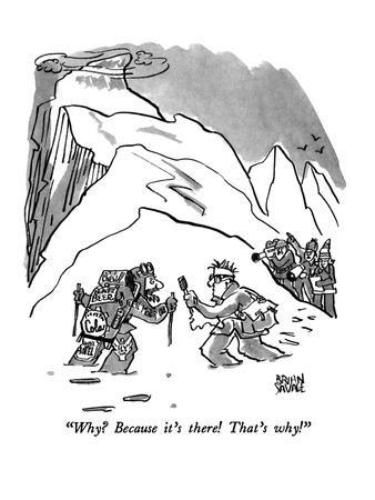 """""""Why?  Because it's there!  That's why!"""" - New Yorker Cartoon"""