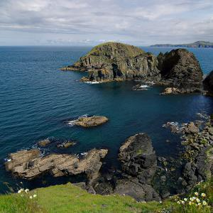 Pembrokeshire Ynys Deullyn by Brian T Photography