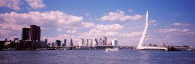 Bridge Across a River, Erasmus Bridge, Nieuwe Maas River, Rotterdam, South Holland, Netherlands