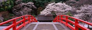 Bridge Murouji Temple (Murou Village) Nara Japan