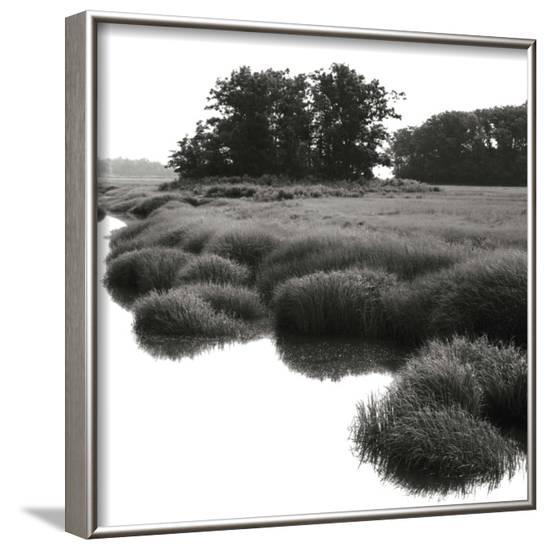 Bright Mist on the Marsh-Dorothy Kerper Monnelly-Framed Art Print