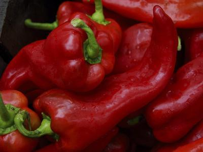 https://imgc.allpostersimages.com/img/posters/bright-red-peppers-at-farmers-market-portland-maine_u-L-Q10T5AP0.jpg?p=0