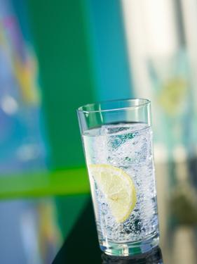 A Glass of Sparkling Mineral Water with a Wedge of Lemon by Brigitte Protzel