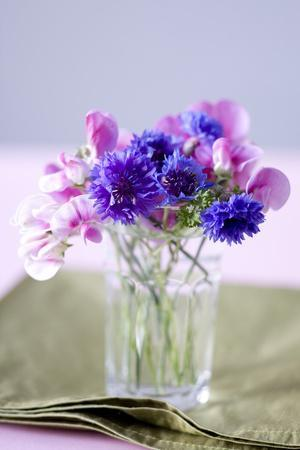 Small Bouquet with Cornflowers and Vetch on Green Silk