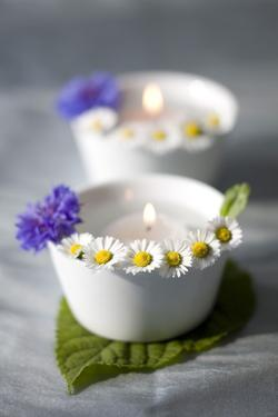 Small White Bowls with Floating Candles and Daisies by Brigitte Protzel