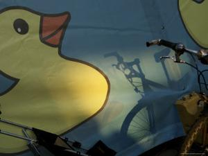Screened Image of a Duck, Arhus, Denmark by Brimberg & Coulson