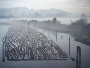 Timber Floating on Water around Coos Bay, Oregon Coast by Brimberg & Coulson