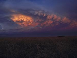 Wheat Field and Cloudy Sky, Kansas by Brimberg & Coulson