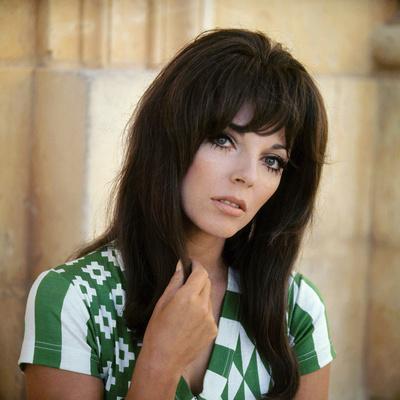 https://imgc.allpostersimages.com/img/posters/british-actress-joan-collins-1965-photo_u-L-Q1C3M7Q0.jpg?artPerspective=n