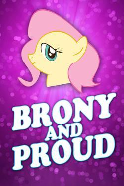 Brony and Proud Pony Poster