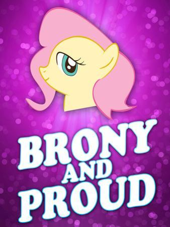 Brony and Proud Pony