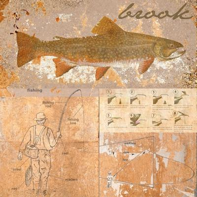 https://imgc.allpostersimages.com/img/posters/brook-trout_u-L-Q1IDE0A0.jpg?artPerspective=n
