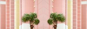 Two Palms by Brooke T. Ryan