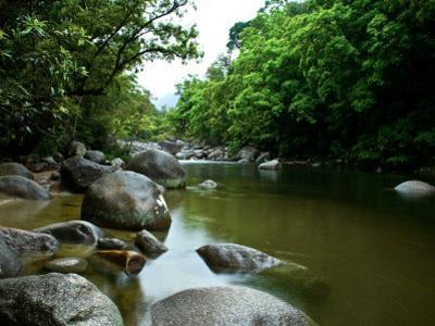 Landscape Image of Mossman River, Queensland, Australia by Brooke Whatnall