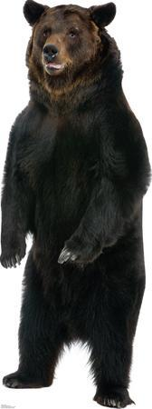 Brown Bear Lifesize Standup