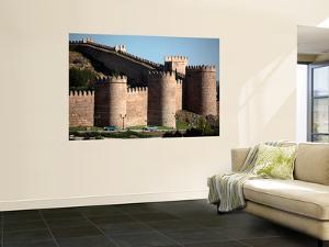 Medieval City Wall of Avila by Bruce Bi