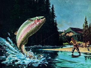 Rainbow Trout by Bruce Bontrager