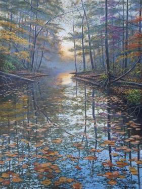 Autumn Rest by Bruce Dumas