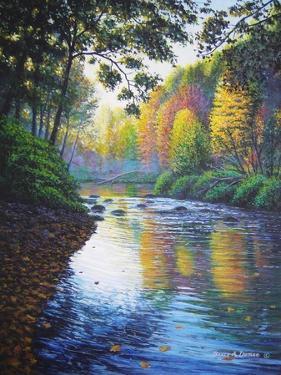 Autumn Splendor by Bruce Dumas