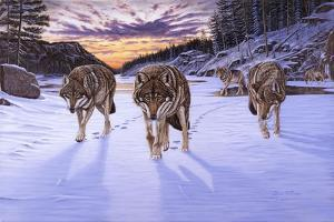 Born to Be Wild by Bruce Dumas