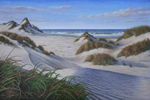 Buxton Sand Dunes by Bruce Dumas