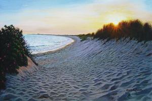 Dune Burst by Bruce Dumas