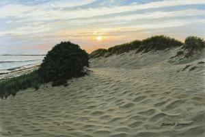 Dune Walk by Bruce Dumas