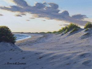 Dune Watch by Bruce Dumas