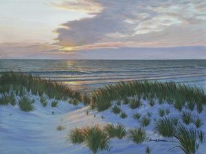 Fort De Soto Sunset by Bruce Dumas