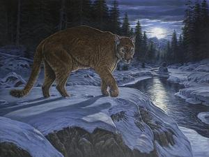Night Stalker by Bruce Dumas