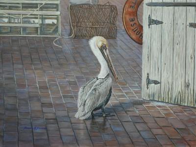 Petes' Pelican