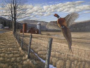 Pheasant by Bruce Dumas