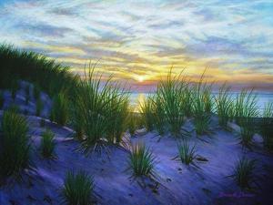 Race Point Dune Sunset by Bruce Dumas