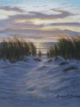 Shore Path by Bruce Dumas