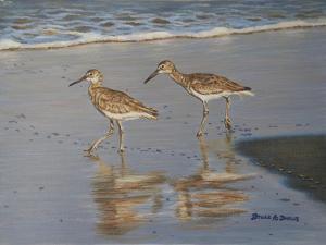 Shore Walkers by Bruce Dumas